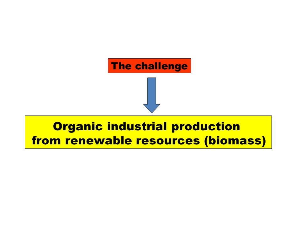 Schema generale di bioraffineria