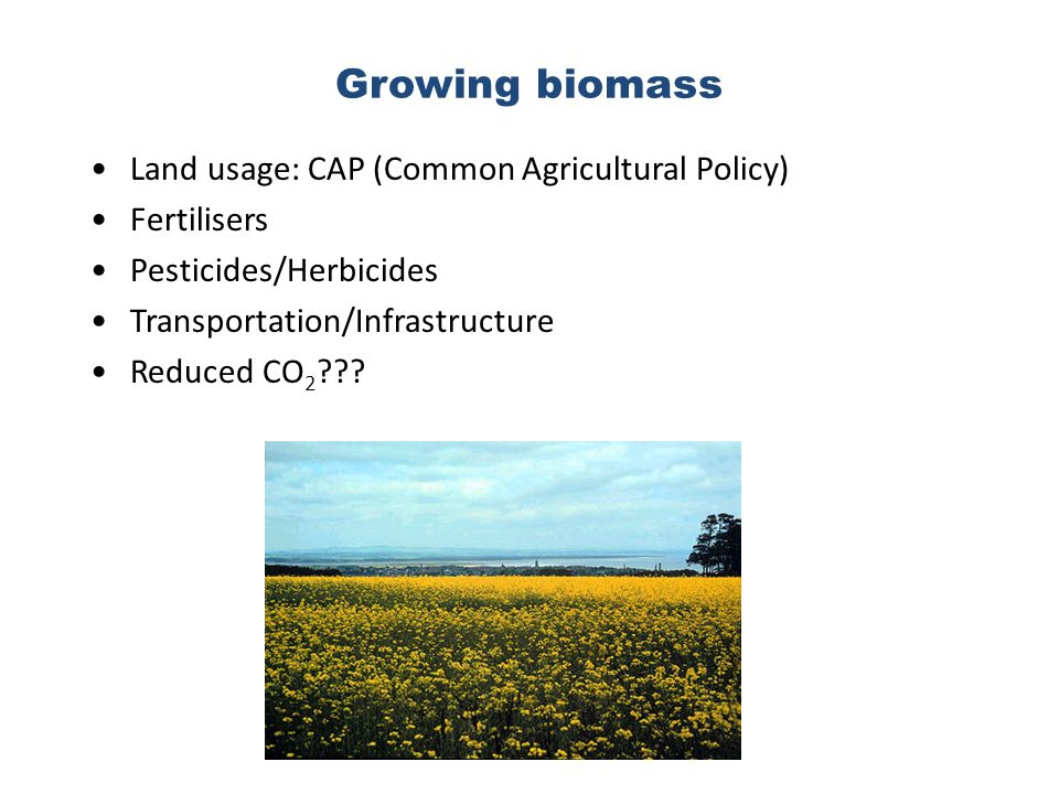 Growing biomass Land usage: CAP (Common Agricultural Policy) Fertilisers Pesticides/Herbicides Transportation/Infrastructure Reduced CO 2 ???