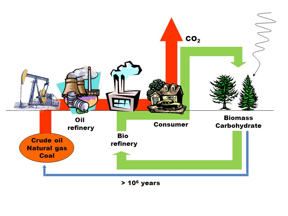 Crude oil Natural gas Coal Oil refinery Bio refinery Consumer Biomass Carbohydrate CO 2 > 10 6 years
