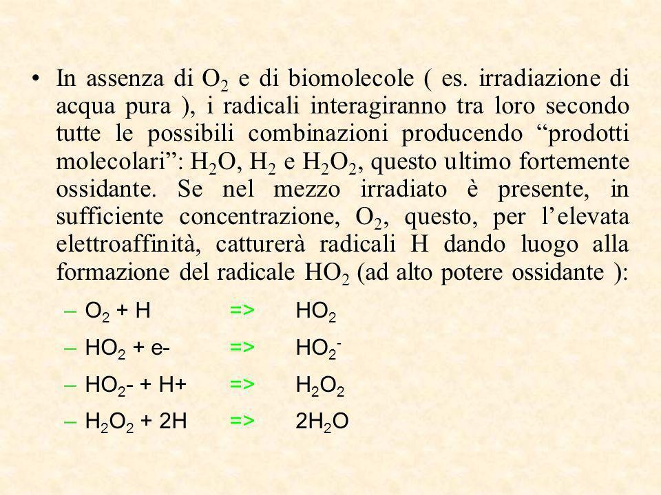In assenza di O 2 e di biomolecole ( es. irradiazione di acqua pura ), i radicali interagiranno tra loro secondo tutte le possibili combinazioni produ