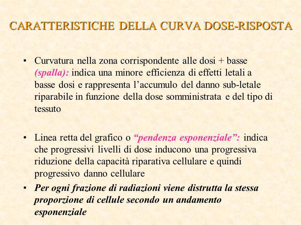 CARATTERISTICHE DELLA CURVA DOSE-RISPOSTA Curvatura nella zona corrispondente alle dosi + basse (spalla): indica una minore efficienza di effetti leta