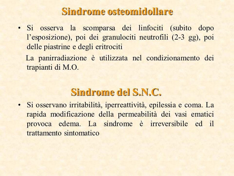 Sindrome osteomidollare Si osserva la scomparsa dei linfociti (subito dopo lesposizione), poi dei granulociti neutrofili (2-3 gg), poi delle piastrine