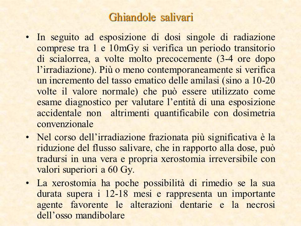 Ghiandole salivari In seguito ad esposizione di dosi singole di radiazione comprese tra 1 e 10mGy si verifica un periodo transitorio di scialorrea, a