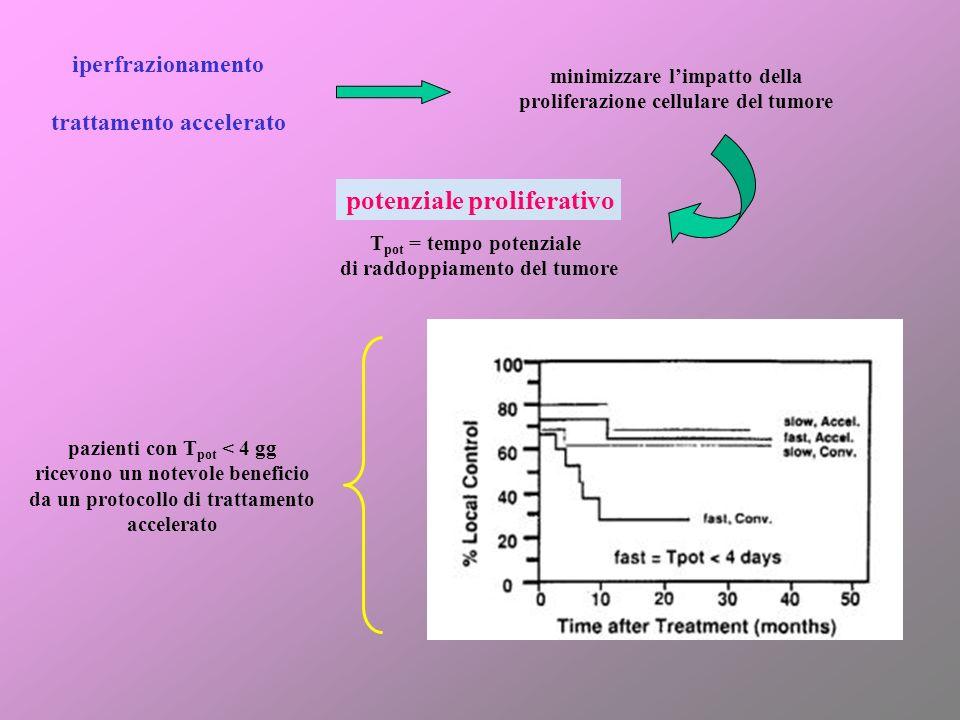 potenziale proliferativo T pot = tempo potenziale di raddoppiamento del tumore iperfrazionamento trattamento accelerato minimizzare limpatto della pro