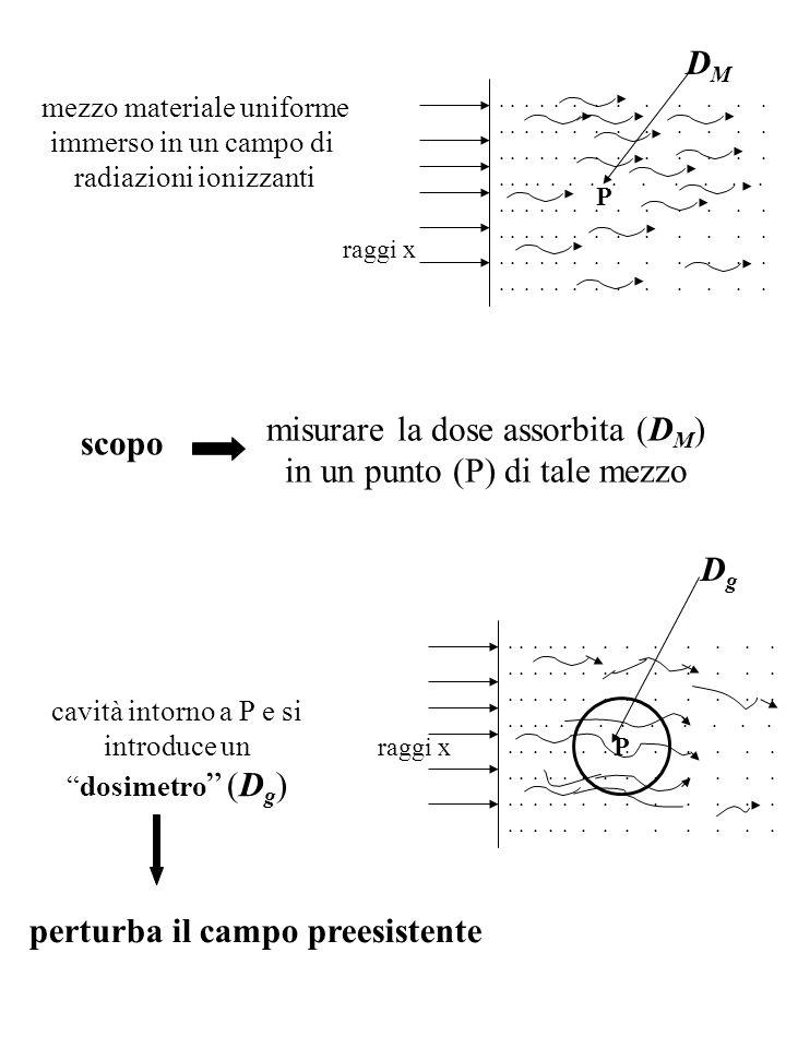 mezzo materiale uniforme immerso in un campo di radiazioni ionizzanti scopo misurare la dose assorbita (D M ) in un punto (P) di tale mezzo cavità int