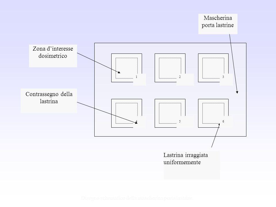 Zona dinteresse dosimetrico Mascherina porta lastrine Lastrina irraggiata uniformemente 123 456 Contrassegno della lastrina Disegno schematico della m