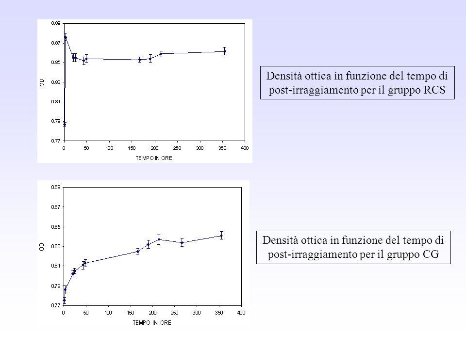 Densità ottica in funzione del tempo di post-irraggiamento per il gruppo RCS Densità ottica in funzione del tempo di post-irraggiamento per il gruppo