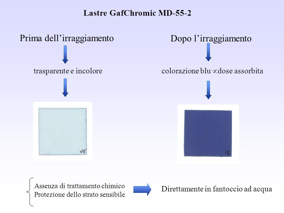 trasparente e incolore Prima dellirraggiamento Dopo lirraggiamento colorazione blu dose assorbita Direttamente in fantoccio ad acqua Lastre GafChromic