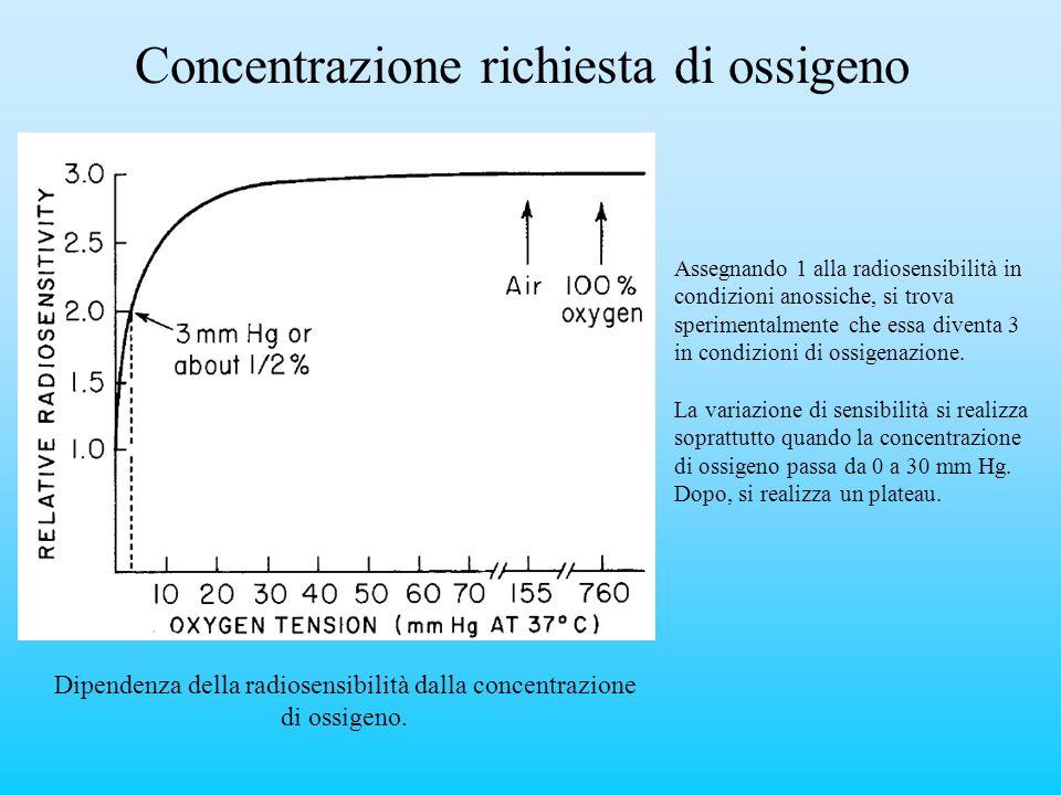 Concentrazione richiesta di ossigeno Dipendenza della radiosensibilità dalla concentrazione di ossigeno. Assegnando 1 alla radiosensibilità in condizi