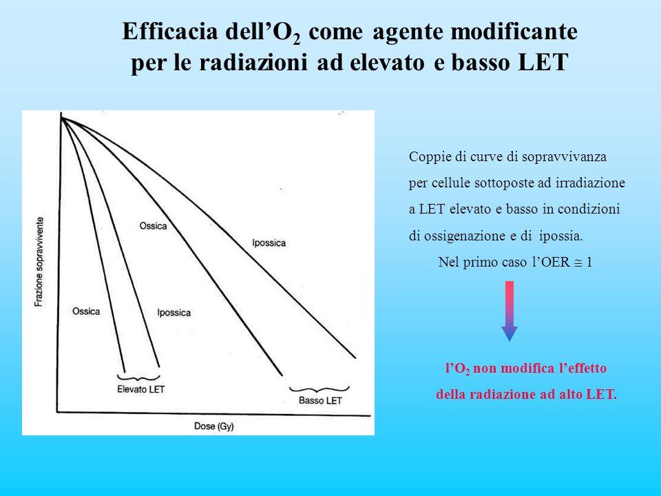 Efficacia dellO 2 come agente modificante per le radiazioni ad elevato e basso LET Coppie di curve di sopravvivanza per cellule sottoposte ad irradiaz