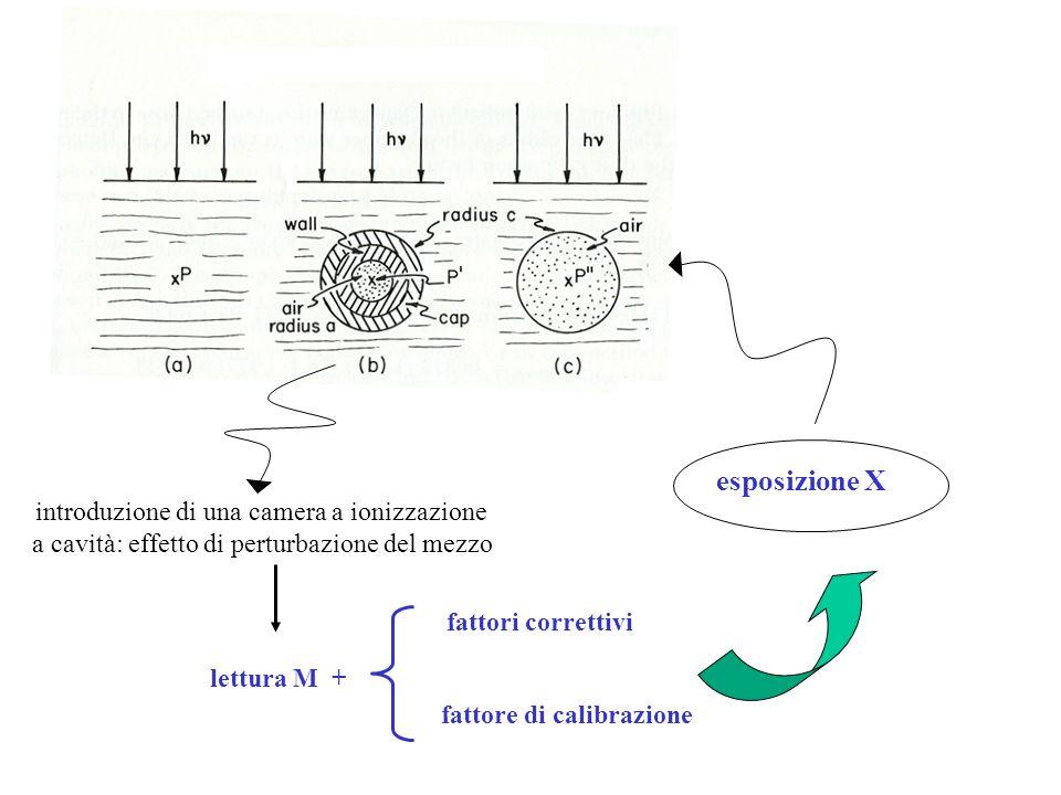 introduzione di una camera a ionizzazione a cavità: effetto di perturbazione del mezzo lettura M + fattori correttivi fattore di calibrazione esposizi