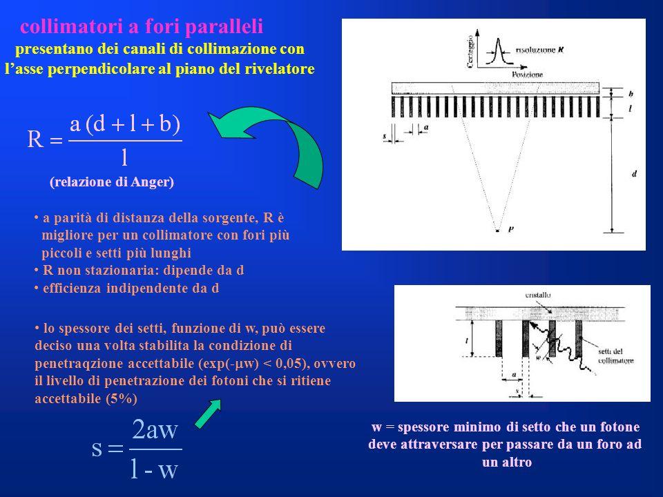 collimatori a fori paralleli presentano dei canali di collimazione con lasse perpendicolare al piano del rivelatore a parità di distanza della sorgent