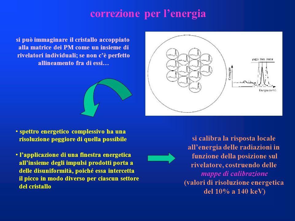 correzione per lenergia si può immaginare il cristallo accoppiato alla matrice dei PM come un insieme di rivelatori individuali; se non cè perfetto al
