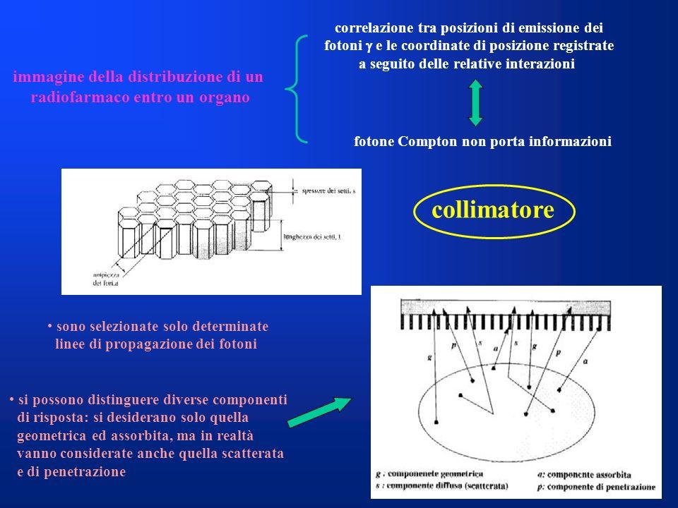 correlazione tra posizioni di emissione dei fotoni e le coordinate di posizione registrate a seguito delle relative interazioni immagine della distrib