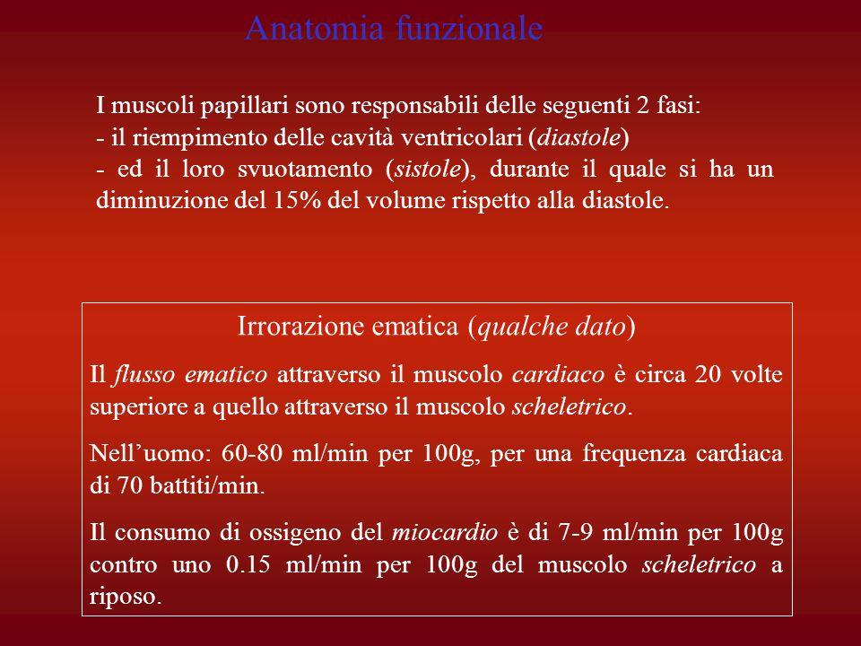 FASE 0 (depolarizzazione).