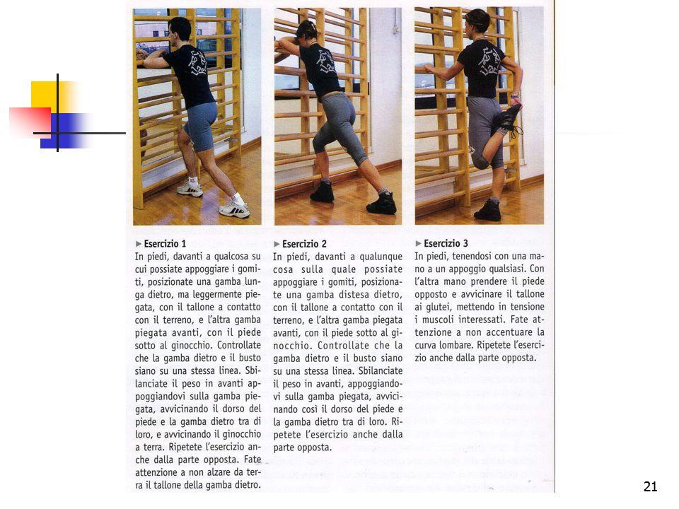 20 esercizi di stretching Gli esercizi di stretching consistono in semplici movimenti il cui scopo è quello di allungare e riscaldare i muscoli delle