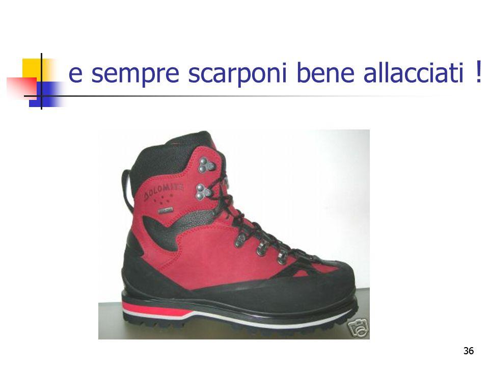 35 la caviglia Larticolazione della caviglia è stata progettata solo per la flessione e lestensione (= movimenti per la deambulazione), mentre può sop