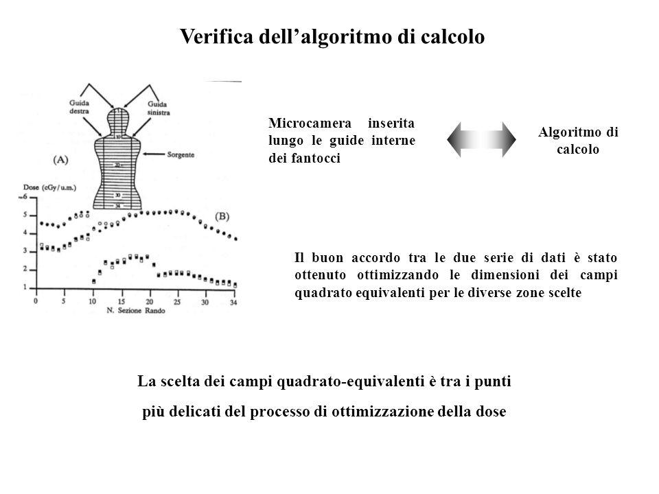 Verifica dellalgoritmo di calcolo Microcamera inserita lungo le guide interne dei fantocci Algoritmo di calcolo Il buon accordo tra le due serie di da