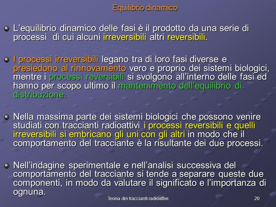 20Teoria dei traccianti radioattivi Equilibrio dinamico Lequilibrio dinamico delle fasi è il prodotto da una serie di processi di cui alcuni irreversi