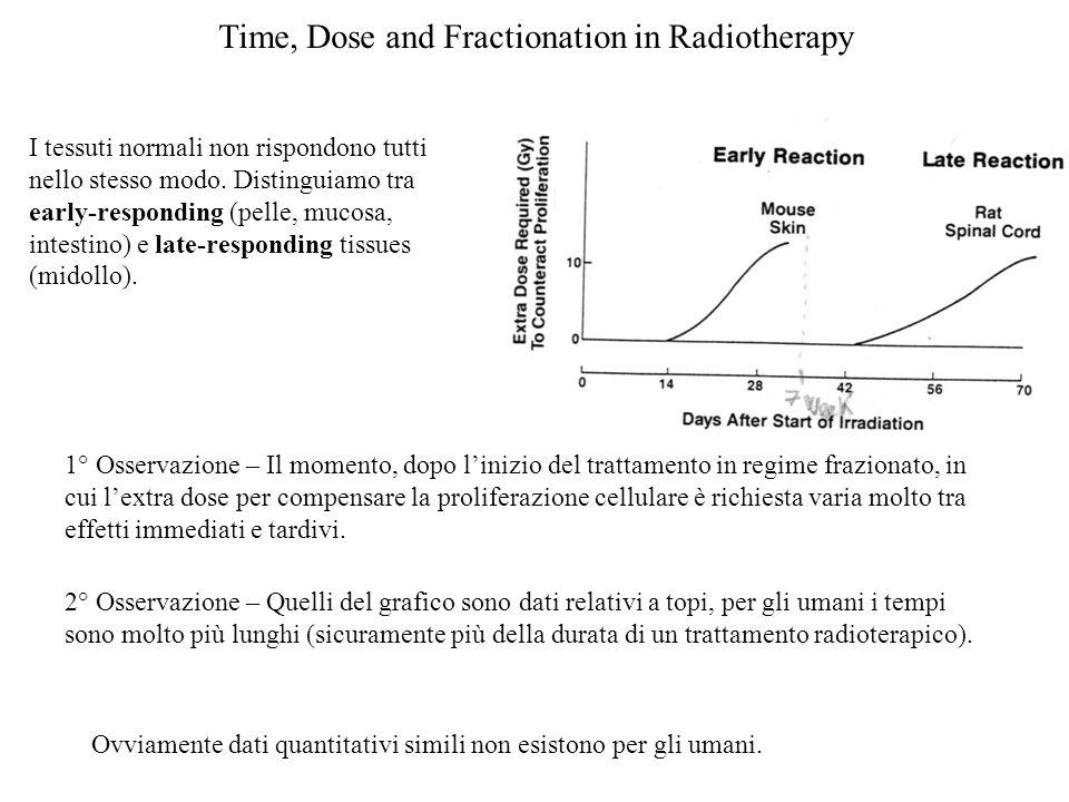 Time, Dose and Fractionation in Radiotherapy I tessuti normali non rispondono tutti nello stesso modo. Distinguiamo tra early-responding (pelle, mucos