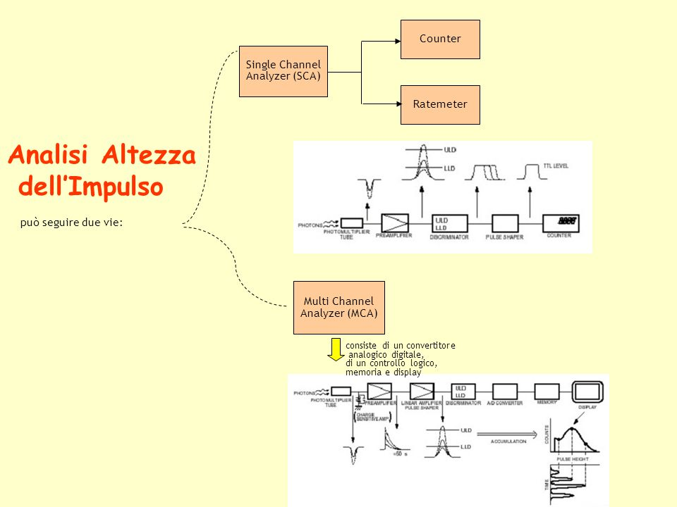 Analisi Altezza dellImpulso può seguire due vie: Multi Channel Analyzer (MCA) consiste di un convertitore analogico digitale, di un controllo logico, memoria e display Single Channel Analyzer (SCA) Counter Ratemeter