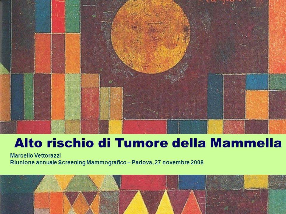 Alto rischio di Tumore della Mammella Marcello Vettorazzi Riunione annuale Screening Mammografico – Padova, 27 novembre 2008