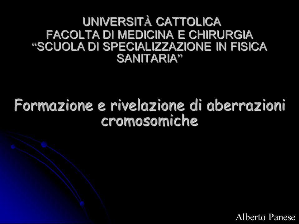 UNIVERSIT À CATTOLICA FACOLTA DI MEDICINA E CHIRURGIA SCUOLA DI SPECIALIZZAZIONE IN FISICA SANITARIA Formazione e rivelazione di aberrazioni cromosomi