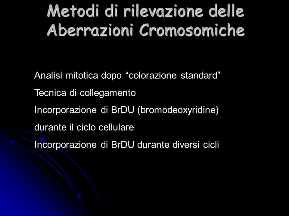 Metodi di rilevazione delle Aberrazioni Cromosomiche Analisi mitotica dopo colorazione standard Tecnica di collegamento Incorporazione di BrDU (bromod