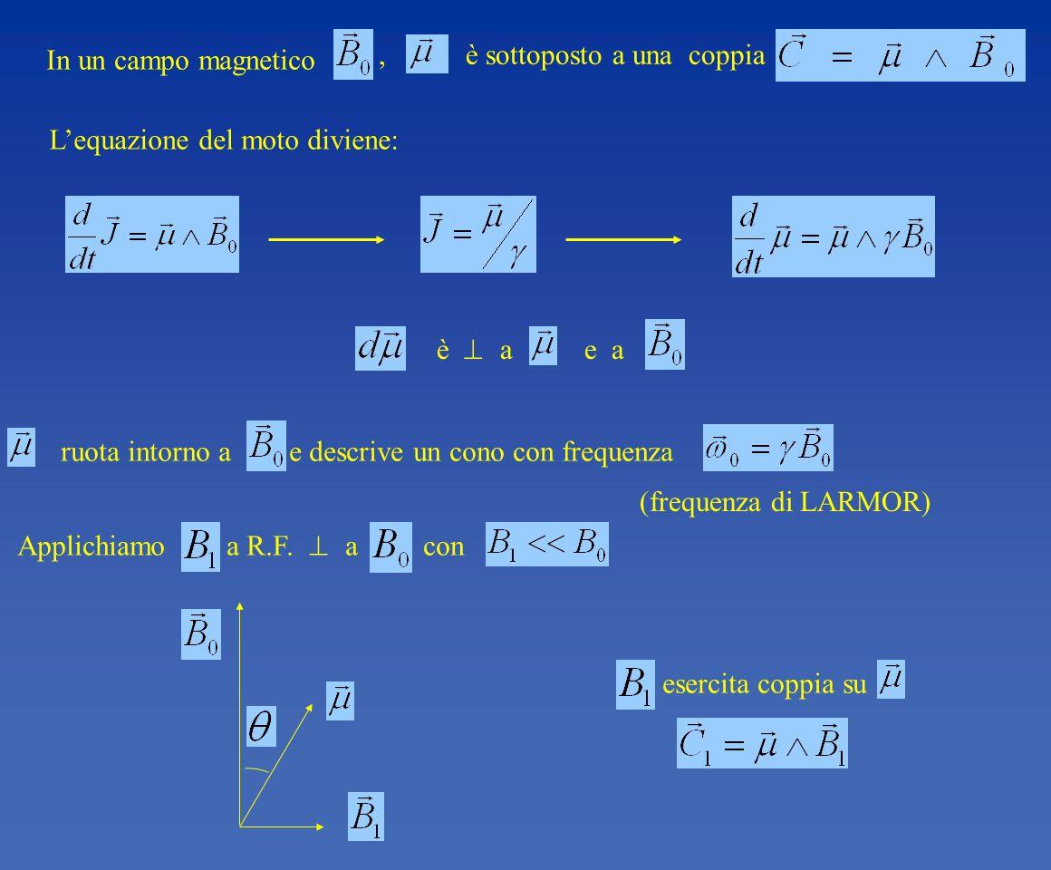 , è sottoposto a una coppia Applichiamo a R.F. a con In un campo magnetico Lequazione del moto diviene: è a e a ruota intorno a e descrive un cono con