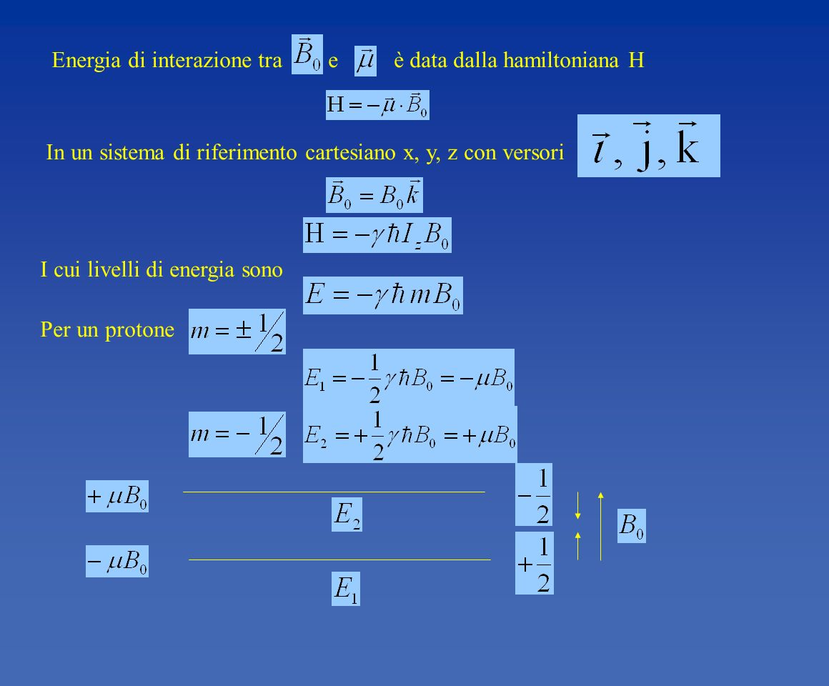Energia di interazione tra e è data dalla hamiltoniana H I cui livelli di energia sono Per un protone In un sistema di riferimento cartesiano x, y, z
