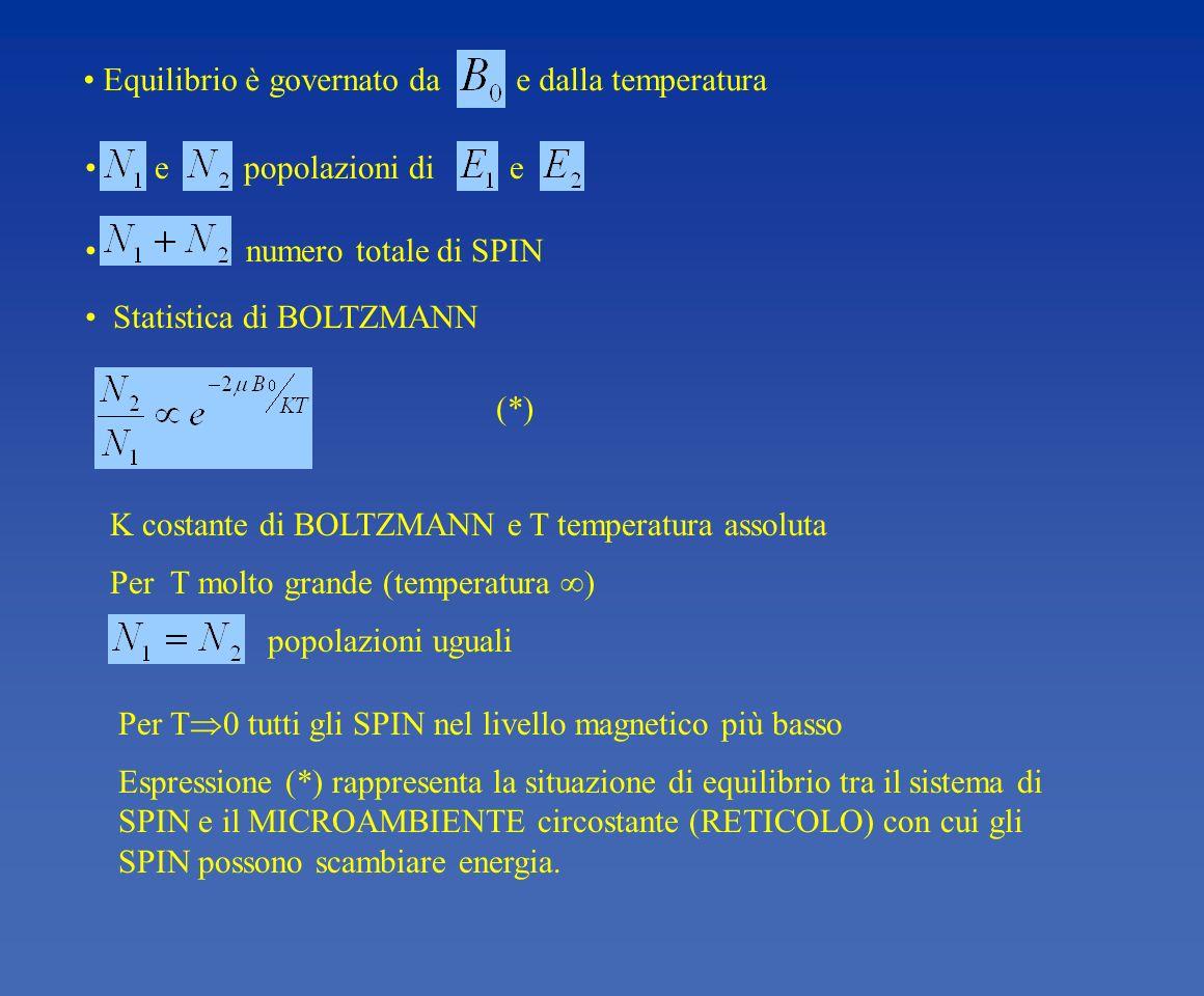 numero totale di SPIN Equilibrio è governato da e dalla temperatura e popolazioni di e Statistica di BOLTZMANN (*) K costante di BOLTZMANN e T tempera