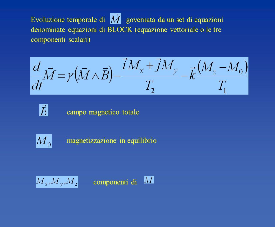 componenti di magnetizzazione in equilibrio campo magnetico totale Evoluzione temporale di governata da un set di equazioni denominate equazioni di BL