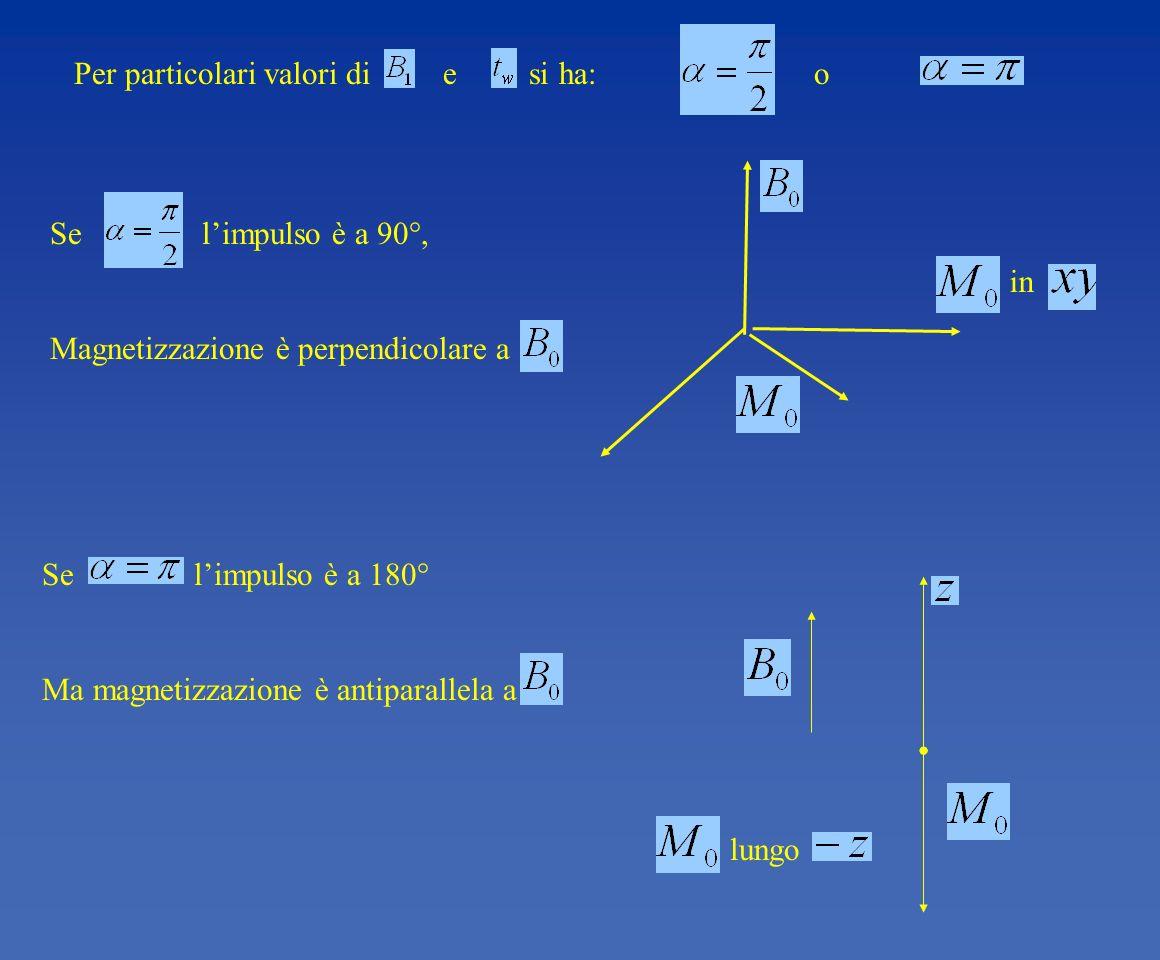 lungo in Per particolari valori di e si ha: o Se limpulso è a 90°, Magnetizzazione è perpendicolare a Se limpulso è a 180° Ma magnetizzazione è antipa