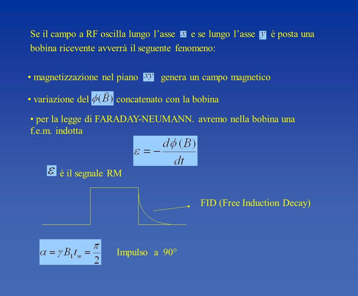 Impulso a 90° FID (Free Induction Decay) è il segnale RM per la legge di FARADAY-NEUMANN. avremo nella bobina una f.e.m. indotta variazione del concat