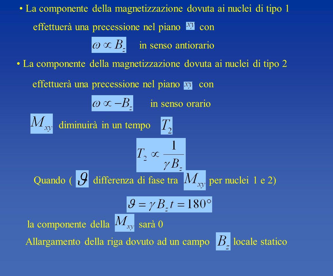 Allargamento della riga dovuto ad un campo locale statico la componente della sarà 0 Quando ( differenza di fase tra per nuclei 1 e 2) diminuirà in un