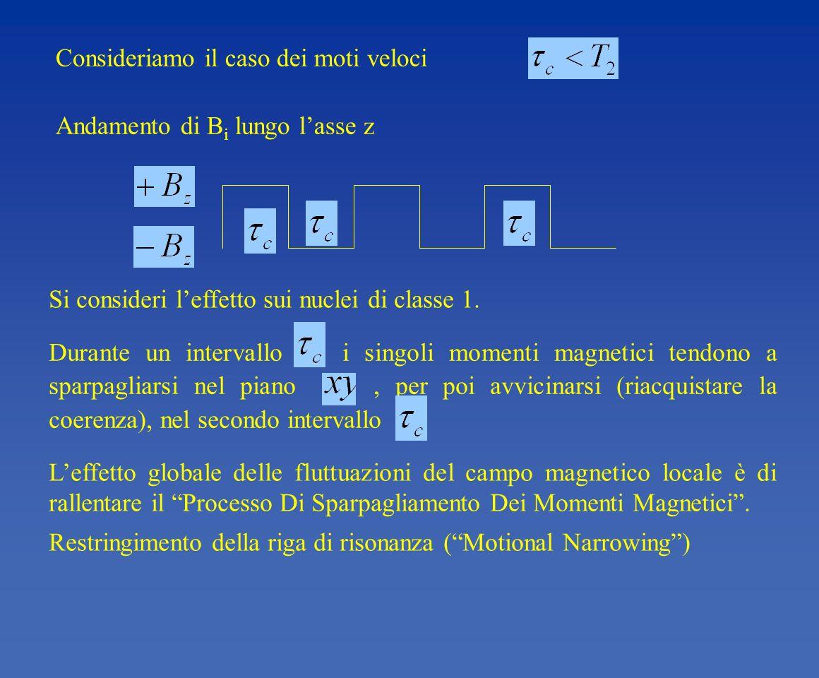 Si consideri leffetto sui nuclei di classe 1. Durante un intervallo i singoli momenti magnetici tendono a sparpagliarsi nel piano, per poi avvicinarsi