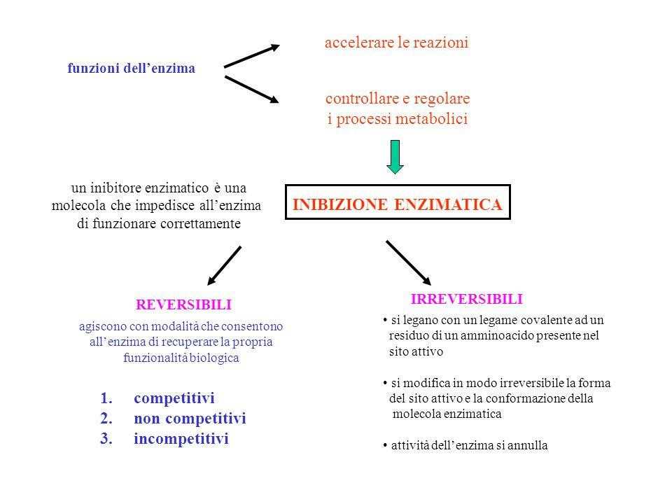 funzioni dellenzima accelerare le reazioni controllare e regolare i processi metabolici INIBIZIONE ENZIMATICA un inibitore enzimatico è una molecola c
