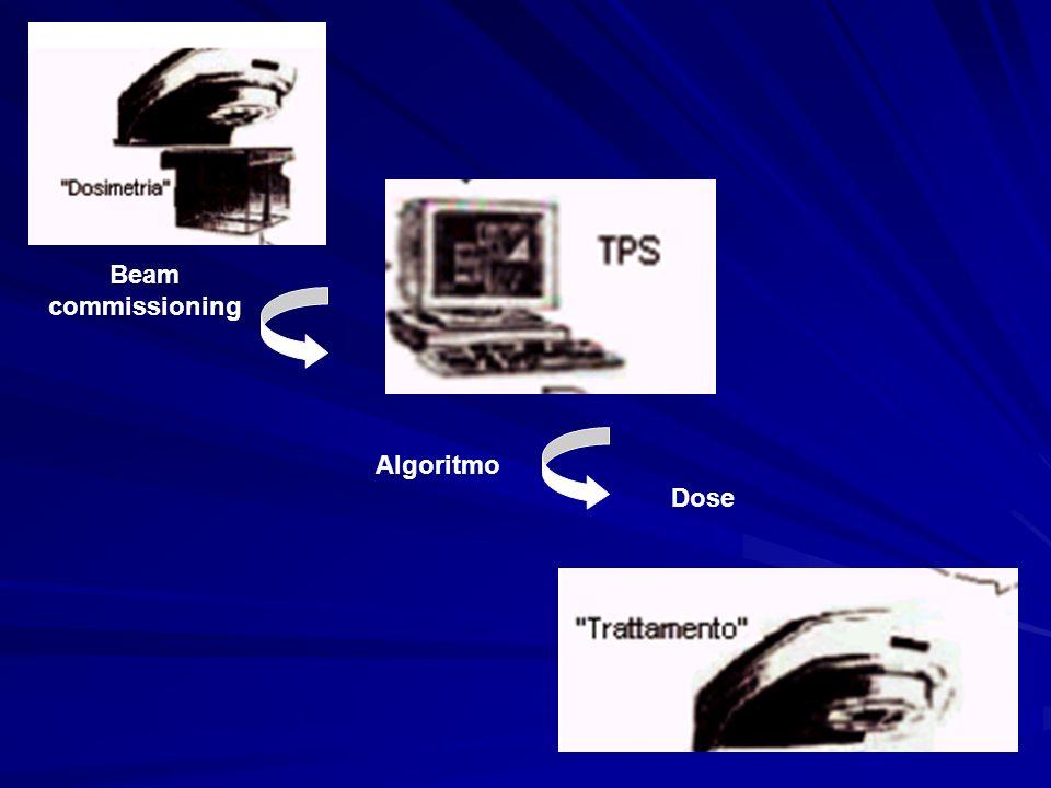 Caratteristiche geometriche di un acceleratore da inserire nel TPS durante la fase di configurazione.