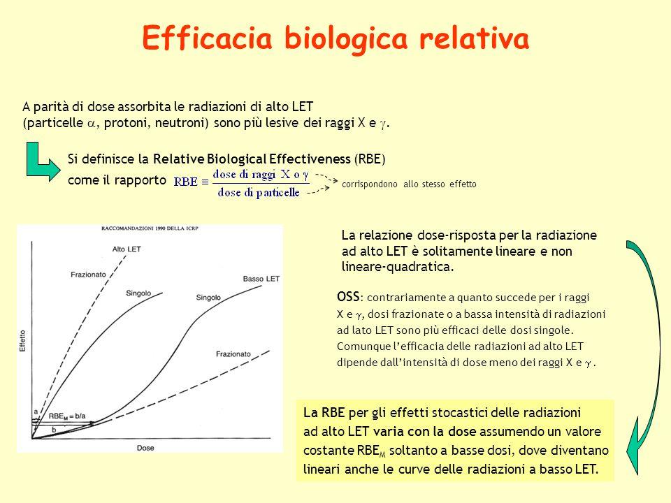 19 Efficacia biologica relativa A parità di dose assorbita le radiazioni di alto LET (particelle, protoni, neutroni) sono più lesive dei raggi X e. OS