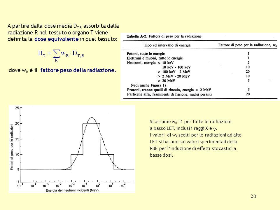 20 A partire dalla dose media D T,R assorbita dalla radiazione R nel tessuto o organo T viene definita la dose equivalente in quel tessuto: dove w R è
