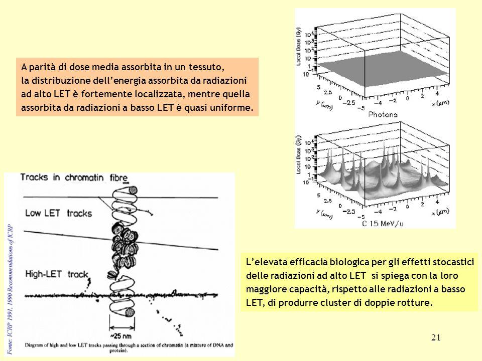 21 A parità di dose media assorbita in un tessuto, la distribuzione dellenergia assorbita da radiazioni ad alto LET è fortemente localizzata, mentre q