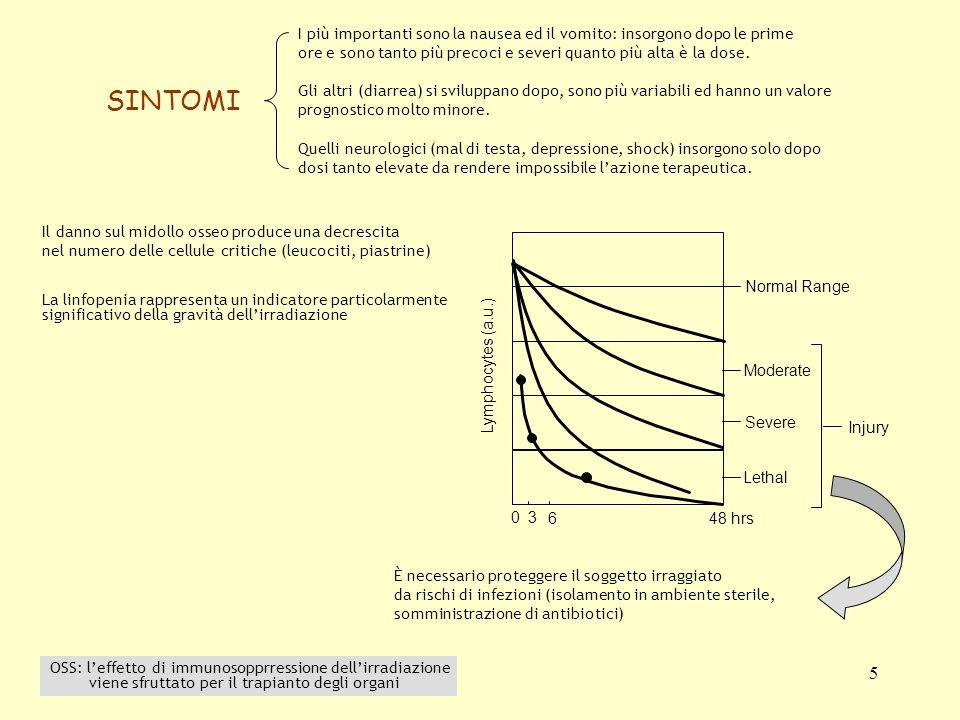 5 30 6 48 hrs Normal Range Moderate Severe Lethal Injury Lymphocytes (a.u.) La linfopenia rappresenta un indicatore particolarmente significativo dell