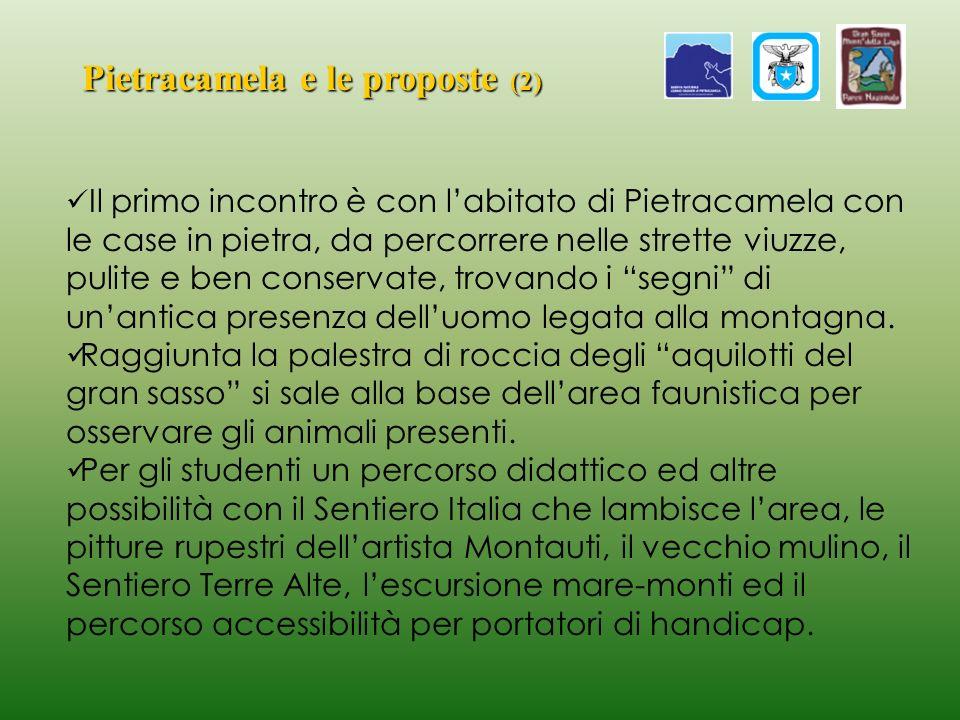 Pietracamela e le proposte (2) Il primo incontro è con labitato di Pietracamela con le case in pietra, da percorrere nelle strette viuzze, pulite e be