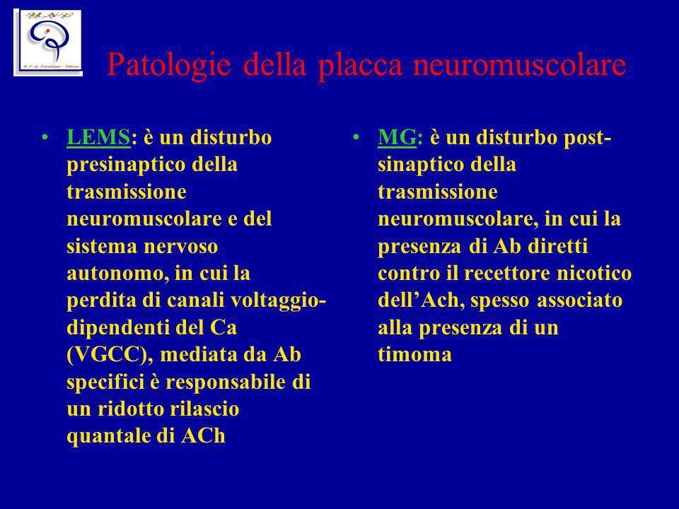 Patologie della placca neuromuscolare LEMS: è un disturbo presinaptico della trasmissione neuromuscolare e del sistema nervoso autonomo, in cui la per