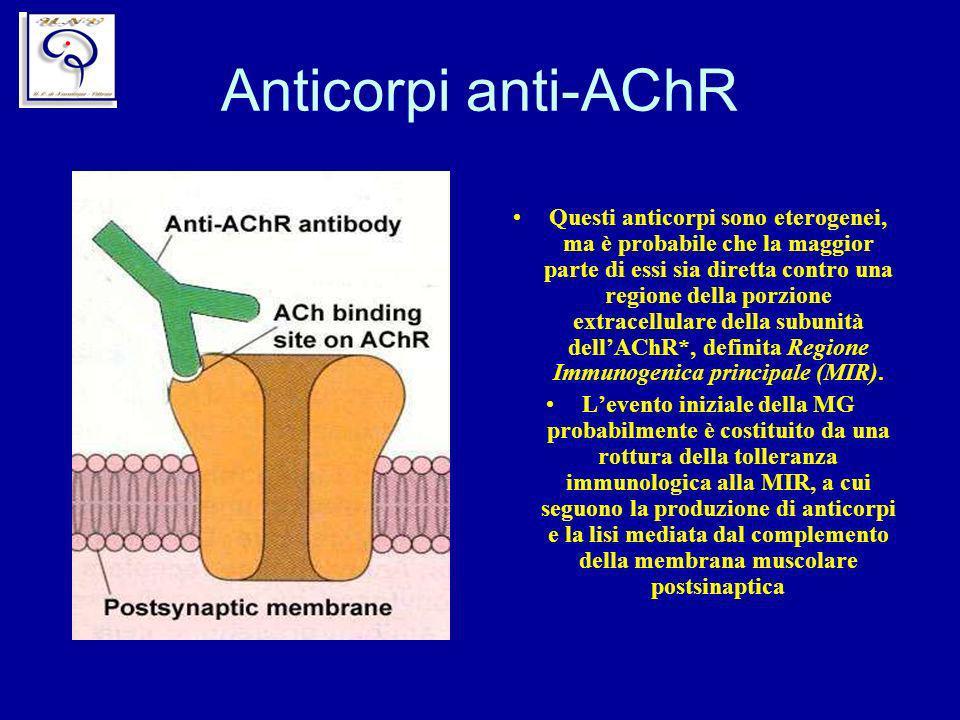Anticorpi anti-AChR Questi anticorpi sono eterogenei, ma è probabile che la maggior parte di essi sia diretta contro una regione della porzione extrac