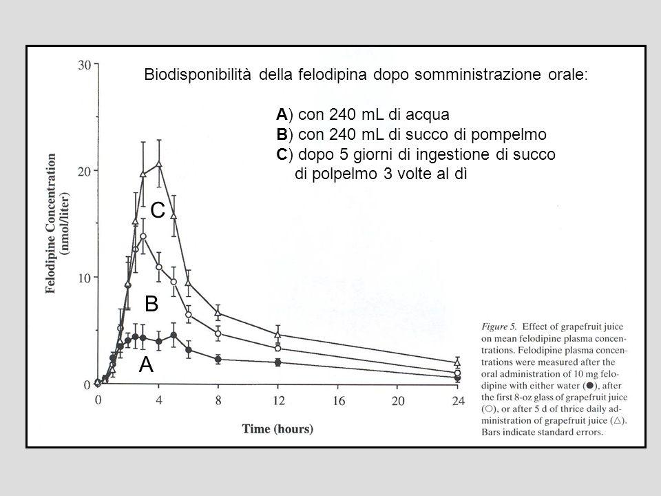 Biodisponibilità della felodipina dopo somministrazione orale: A) con 240 mL di acqua B) con 240 mL di succo di pompelmo C) dopo 5 giorni di ingestion