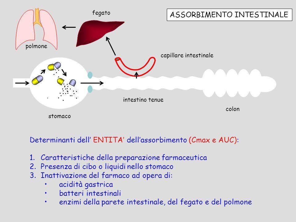 ASSORBIMENTO INTESTINALE stomaco intestino tenue colon............................... capillare intestinale fegato Determinanti dell ENTITA dellassorb
