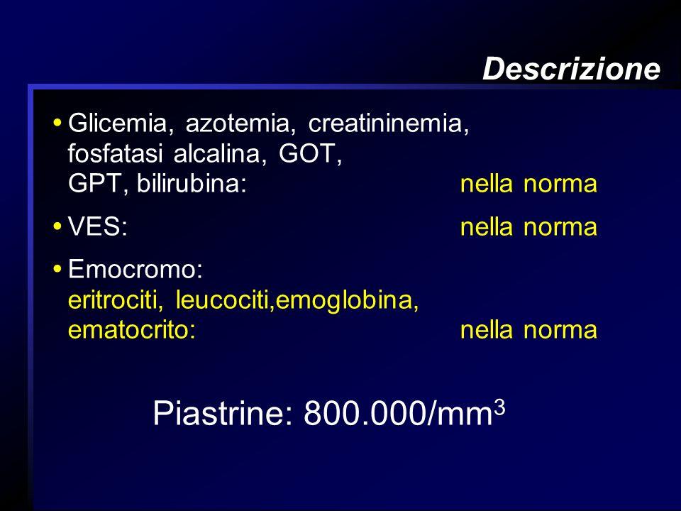 Descrizione Glicemia, azotemia, creatininemia, fosfatasi alcalina, GOT, GPT, bilirubina: nella norma VES: nella norma Emocromo: eritrociti, leucociti,