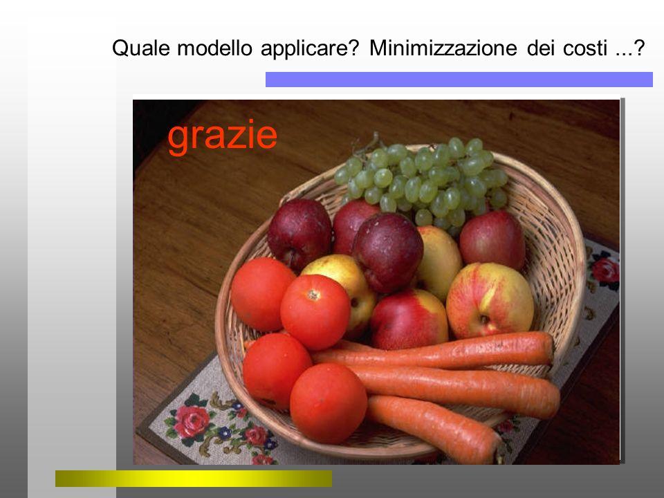 Quale modello applicare? Minimizzazione dei costi...? grazie