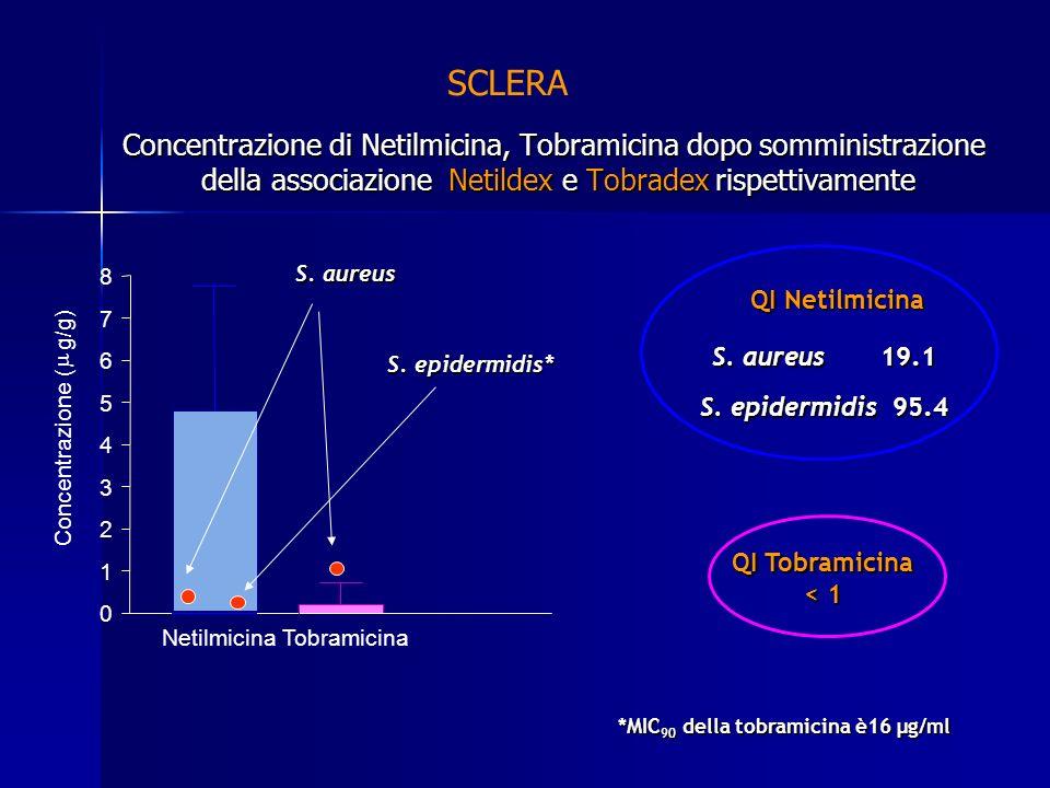 Concentrazione di Netilmicina, Tobramicina dopo somministrazione della associazione Netildex e Tobradex rispettivamente SCLERA QI Netilmicina S. aureu